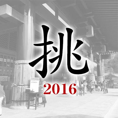 2016今年の漢字「挑」
